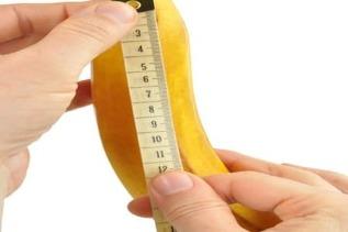 Nario dydis ir augimas Nario dydis seksualiniu veikeju metu