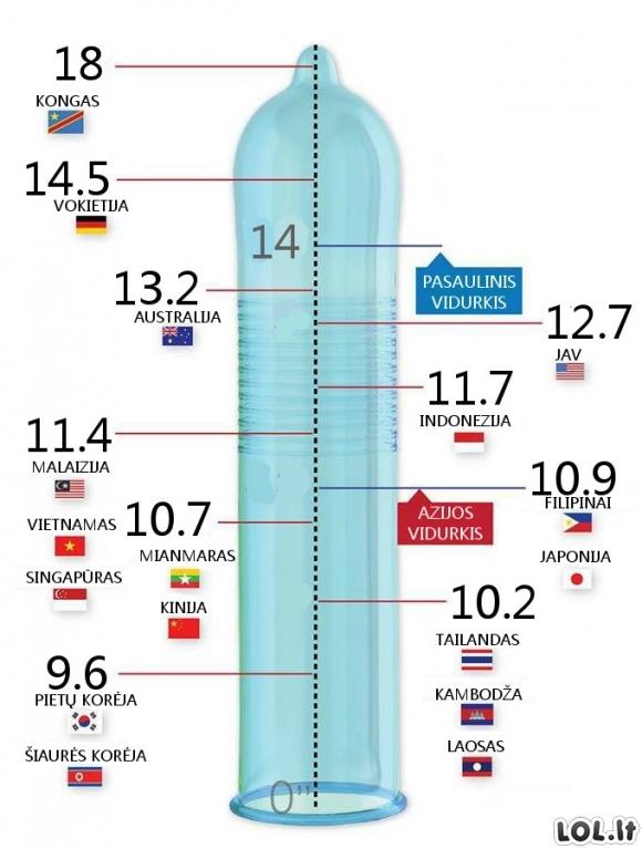 Varpos dydis per 11 metu 11 cm dydis