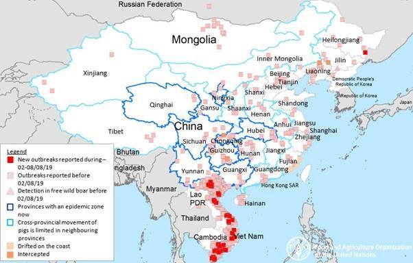Azijoje, vidutinis nario dydis