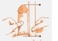 Penis Kaip matuoti matmenis Nekilnojamasis vaizdo irasas Kaip padidinti varpa